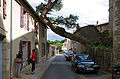 Clisson (Loire-Atlantique) (20229443226).jpg