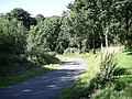 Cockshoot Wood, near Welsh Hook - geograph.org.uk - 2038151.jpg