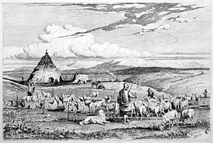 Charles Coleman, etching of transhumant shepherds in the campagna romana, showing sheep, a working dog of Pastore Maremmano-Abruzzese type, horses of Maremmano type and a conical capanna or lestra. From A Series of Subjects peculiar to the Campagna of Rome and Pontine Marshes (1850)