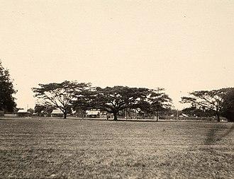 Queen's Park Savannah - The Savannah in 1912