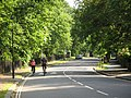 College Road, rising towards Crystal Palace - geograph.org.uk - 840007.jpg