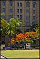 Colour in Queens Park Brisbane-5 (15610856239).jpg