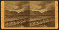 Coming storm - Wasatch Mountains, from the Weber River, near Ogden, by Muybridge, Eadweard, 1830-1904.png