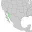 Condalia globosa range map 3.png