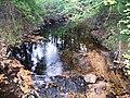 Cook Preserve, Kingston, NJ - panoramio (1).jpg