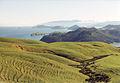 Coromandel Peninsula.jpg