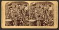 Cotton is king - A plantation scene, Georgia, by Strohmeyer & Wyman 6.png