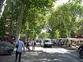 Cours Mirabeau (2852930446).jpg