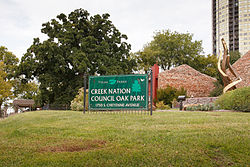 Creek Council Tree Site.jpg