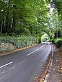 Crevenagh Road, Omagh - geograph.org.uk - 262514.jpg
