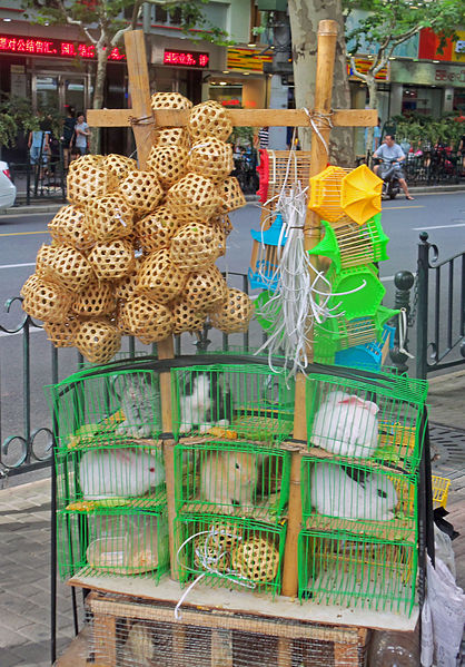 Crickets (in wooden perforated balls) and rabbits for sale on the back of a peddler's bike along Fuzhou Road in Shanghai CC-BY-SA Daniel Case