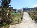 Cuitiva, Calle hacia el pueblo - panoramio.jpg