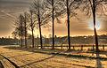 Dülmen, Hausdülmen, Wallgarten -- 2015 -- 0223-7-2.jpg
