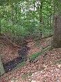 Dümmelbach bei km 0,5.jpg