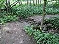 Dūkštų sen., Lithuania - panoramio (155).jpg