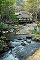 DGJ 4108 - Maesa Elephant Camp (3726037313).jpg