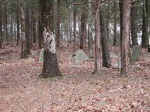 Old Dan Tucker - The graveyard where Daniel Tucker is buried in Elbert County, Georgia, is a tourist attraction due to the minister's possible connection to the song.