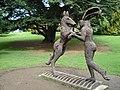 Dancing Hare - geograph.org.uk - 1418551.jpg
