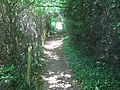 Darenth Valley Path - geograph.org.uk - 1331399.jpg