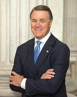 David Perdue, Official Portrait, 114th Congress