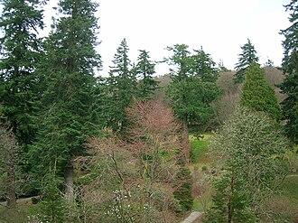 Dawyck Botanic Garden - Image: Dawyck Botanic Gardens view