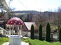 De langa padure din capatul satului Valea Seaca - panoramio.jpg