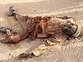 Dead Boko Haram soldier.jpg