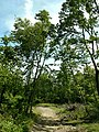 Decker ave to Fire Tower to Greyrun davis farm - panoramio (46).jpg