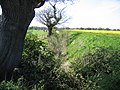 Deep Ditch near Highfield Farm - Looking West - geograph.org.uk - 412239.jpg