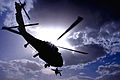 Defense.gov News Photo 110613-F-3352W-115 - A U.S. Special Operations team member is hoisted into a UH-60 Black Hawk helicopter during a medical evacuation training exercise on Multinational.jpg