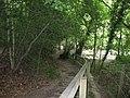 Descent to footbridge in Cuckfield Park - geograph.org.uk - 1365993.jpg