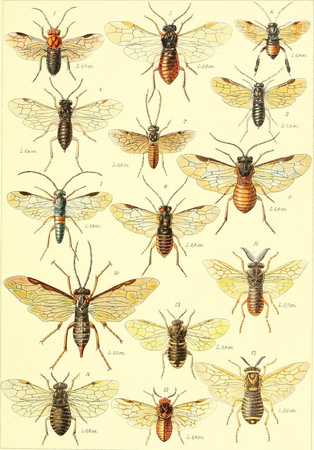 en datation des fossiles de pollen et de coléoptères qu'est-ce que vous obtenez un gars de votre datation pour son anniversaire