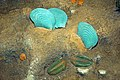 Diorama of a Silurian seafloor - calymenid trilobites, bivalves, brachiopods (44993521014).jpg