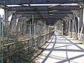 Disused Railway Bridge - geograph.org.uk - 1216240.jpg
