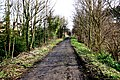 Disused railway now used as a walkway - geograph.org.uk - 1770856.jpg