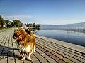 Dojran Lake 18.jpg