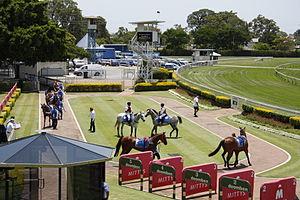 Doomben Racecourse - Pre-race mounting yard