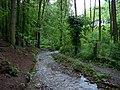 Drahanské údolí, Drahanský potok, u chaty Brnky če. 274.jpg