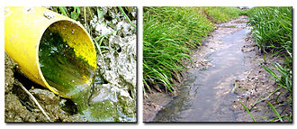 Environmental impact of pesticides - Drainage of fertilizers and pesticides into a stream