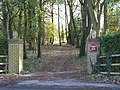 Driveway to Berwick House near Lympne - geograph.org.uk - 1585052.jpg