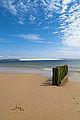 Dune du Pilat depuis le Cap Ferret - Arcachon Gironde France - Picture Image Photography (14086344921).jpg