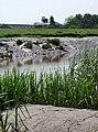 Dutch River and Decoy Farm - geograph.org.uk - 456306.jpg