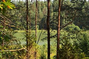 Ežeras Išrūginis.JPG