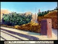 ETH-BIB-Malta, Birchircara, Opuntien-Dia 247-04576.tif