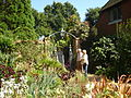 East Ruston Old Vicarage Garden6.JPG