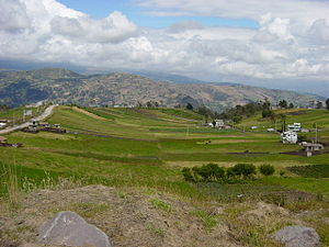 Coffee production in Ecuador - Landscape near Ambato, Ecuador