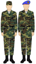 Egyptian Republican Guard camouflage uniform