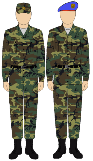 الحرس الجمهوري المصري  300px-Egyptian_Republican_Guard_camo_uniform