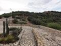 El Morro, Lecheria, Anzoategui, Venezuela - panoramio (37).jpg