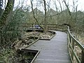Elevated paths, Plants Brook Nature Reserve - geograph.org.uk - 1743289.jpg
